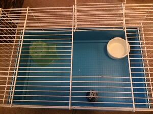 Blue wide small animal cage