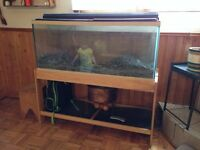 Aquarium for sale $300