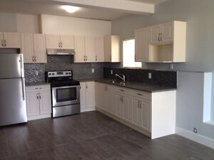 Cloverdale- 2 bedroom ground level suite available