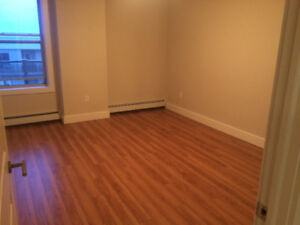 Room for rent in 2 bedroom condo-style apartment Sept 1st