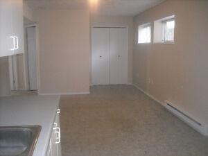 Clean, spacious lower suite