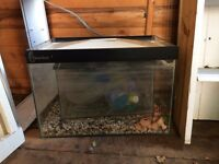 2 fish tanks, pump and accessories - Offers considered