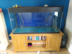 Large fish tank, filter, pump, aerator and heater on stand