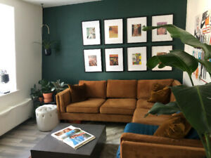 1 Br Trinity Bellwoods Sublet Available Aug-May
