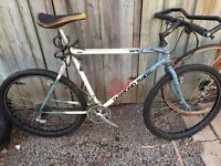 Vintage diamond back hard tail and fork