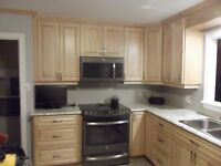 Kitchen and Bathroom Cabinets by Mr. DoRight's