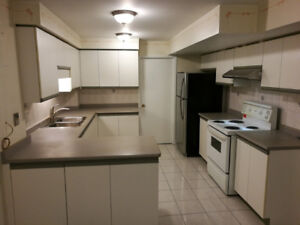 Spacious Bachelor Basement Apartment for Rent in Vaughan