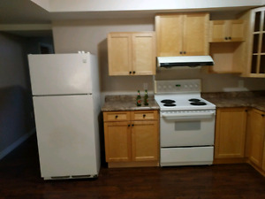 White stove, fridge and hood fan in excellent condition