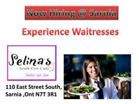 Waitress & Kitchen Help @Sarnia Hiring  South East Cafe