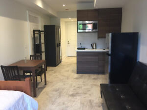 Fully Furnished Ground Floor Unit for Rent (Midtown Toronto)