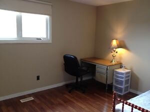 Roommate needed at door steps HSC and MUN, All included