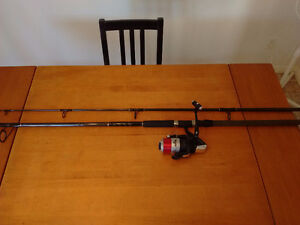 10 ft Musky/Surf casting rod and reel