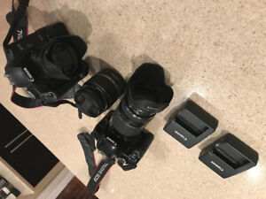 Canon 500D and Canon 450D + Accessories