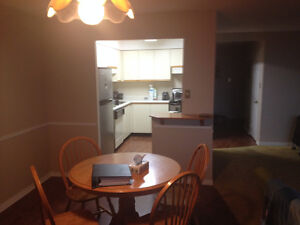 1 Bedroom available immediately London Ontario image 1