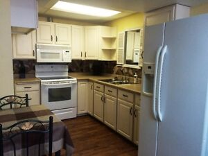 2 b.r.  1 bath fully furnished suite  now to the end of August.