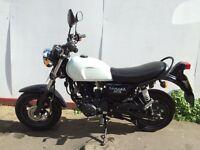Tomcat 125cc wk bikes
