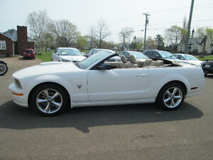 2009 Ford Mustang GT Convertible TRADE WELCOME