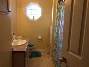 Large bright room for mature student/young professional from Jan Kingston Kingston Area image 3