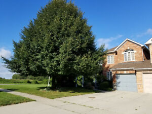 3 Stevenson St. Ancaster Freehold End Unit Townhouse 3 Bedrooms