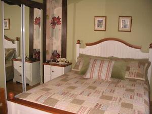 BORD DE L'EAU - Maison à vendre - L'Anse-St-Jean Saguenay Saguenay-Lac-Saint-Jean image 6