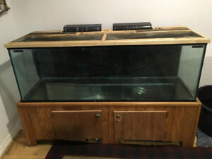 100gal fish tank for sale