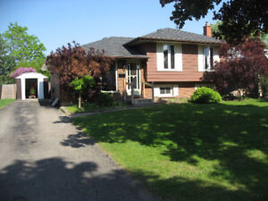 Beautiful quiet family home North End 3 plus bedroom house