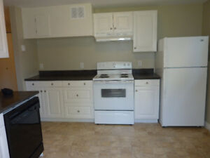 Downtown Dartmouth - Bright Two Bedroom Basement Apartment