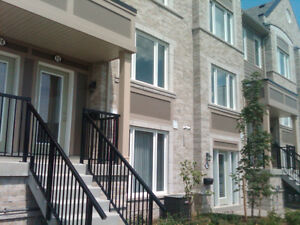 Newly renovated condominium town houses full five appliances