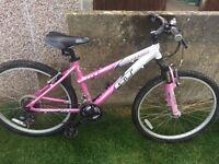Girls GT mountain bike