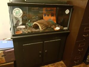 Reptile lounge, stand and accessories