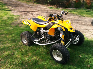 Can-Am DS450 2008