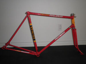 VINTAGE TEAM RALEIGH RECORD 1970-71