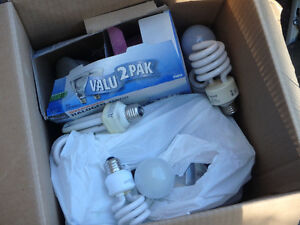 Free box of MISC lights, standard/CFL/Flood/Par20