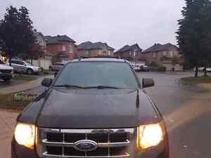 FORD ESCAPE XLT  CERTIFIED GOOD RIDE  WELL MAINTAINED