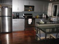 Modern Fully Furnished Condo just off 17Ave in Connaught
