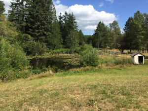 House with acreage in the Cowichan Valley