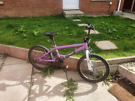Purple BMX Bike 20""