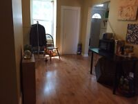 Room available in two bedroom apt King Edward daly Sandy hill