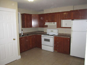 For rent two bedroom apartment/house St. John's Newfoundland image 1