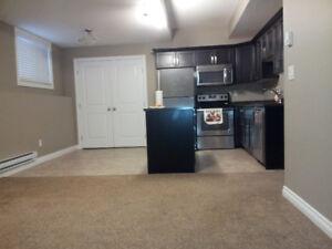 two bedroom legal basement Stonebridge