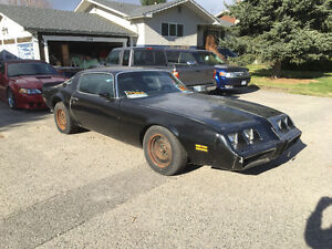 1981 firebird black on black