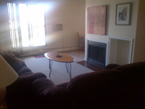 2-bdrm FULLY FURNISHED Condo for JAN. 1. Ideal for K+S, bypass.