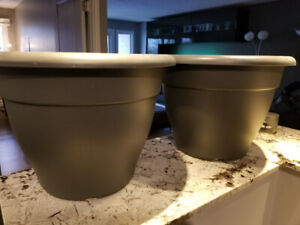 Large indoor Elho Plant Pots