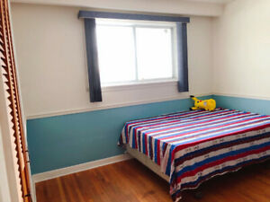 rooms in scarborough close to stc/centennial college