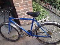 Bikes and parts for sale! Must go!