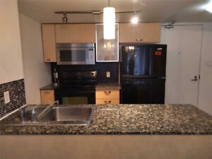 ***Beautiful 1 Bedroom Condo Available for 1 Month Lease***