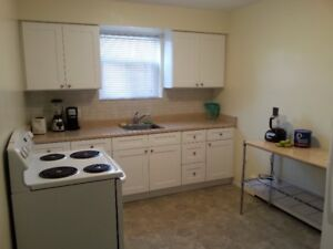 Newly Renovated Apt for rent -one or two bedroom Niagara Falls
