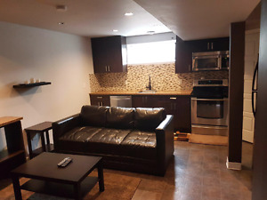 Newer furnished S.side1 bdrm basment suite. Own washer/dryer.
