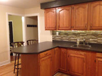 #WALKERVILLE- Newly Renovated 2 Bedroom Apartment!