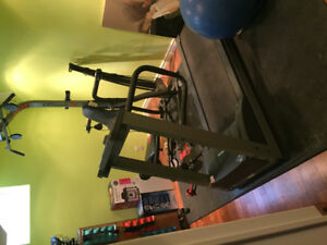 Treadmill and Bowflex for Sale